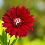 Verify your Blog with Pinterest in a few minutes.