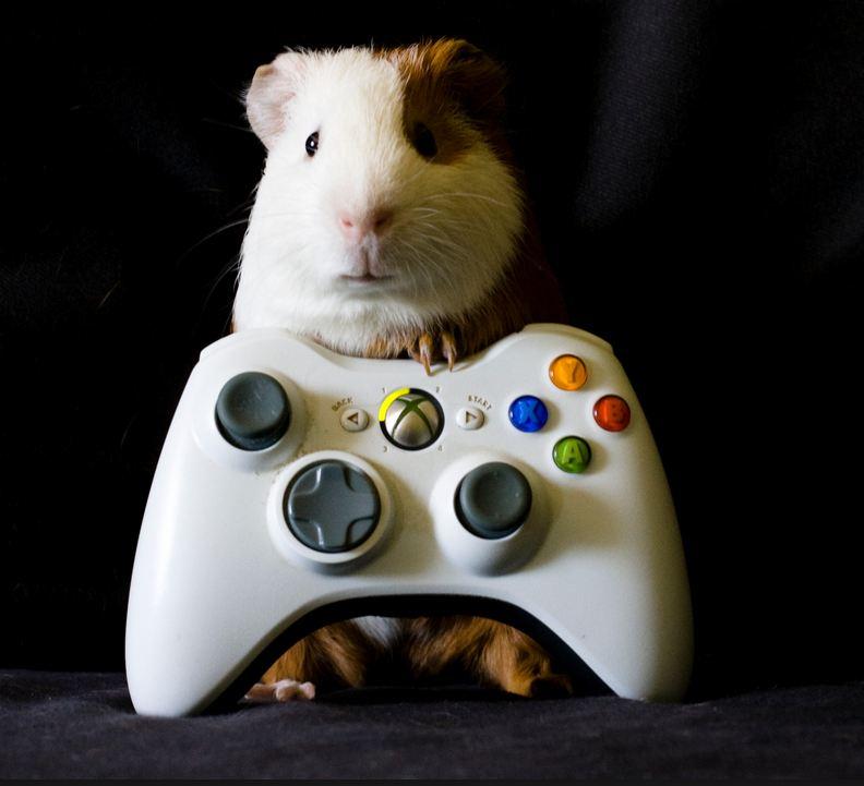 gaming pc build 2015