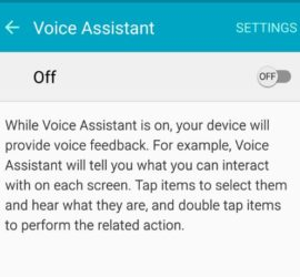 How to enable or Disable Voice assistant