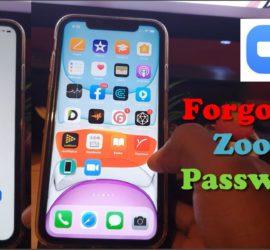 I Forgot My Zoom Account Password