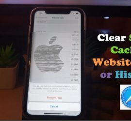 How to Clear Safari Cache on iPhone